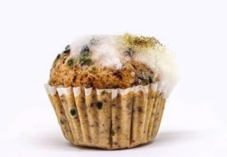 Origin Dehumidifier for Food Industry