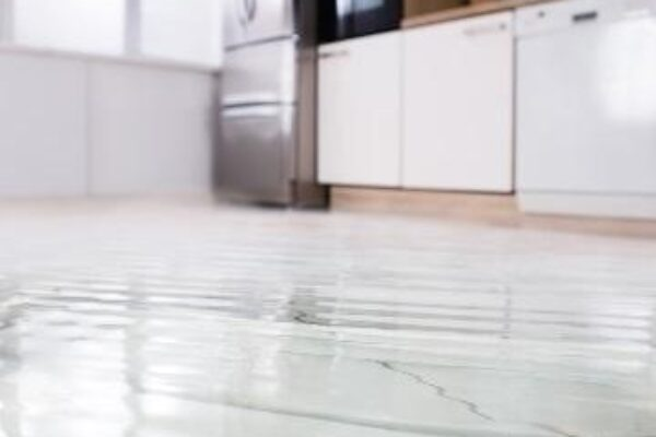 Origin Dehumidifier Solves these 3 Big Problems in a House